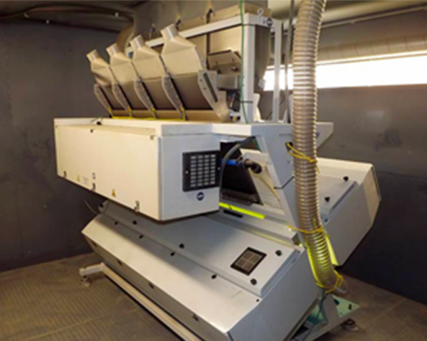 Color Sorter Machine at St.Paul Seed Cleaning (132 KB)